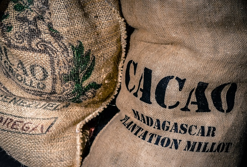Is Cacao Vegan? (& Is Cocoa Vegan?)